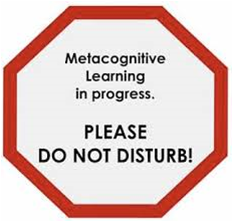 metacog1